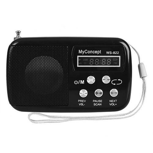 Минидинамик (портативная колонка) с радио WS-822