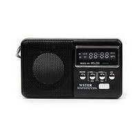 Портативная колонка с радио WS-239, фото 1