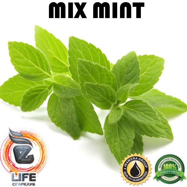 Ароматизатор Inawera MIX MINT (Мятный микс)