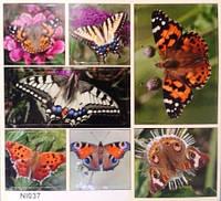 """Наклейка """"Животные,птицы и насекомые"""",37"""