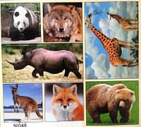"""Наклейка """"Тварини,птахи і комахи"""",48"""