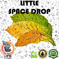 Ароматизатор Inawera Wera Garden LITTLE SPACE DROP (Литл Спейс Дроп)