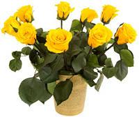 Florich Букет долгосвежих роз Солнечный цитрин (7 карат на коротком стебле) Florich
