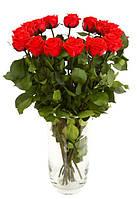 Florich Букет долгосвежих роз Красный рубин (5 карат на среднем стебле) Florich