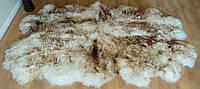 Ковер из 4-х овечьих шкур (овчины) крашеные кончики