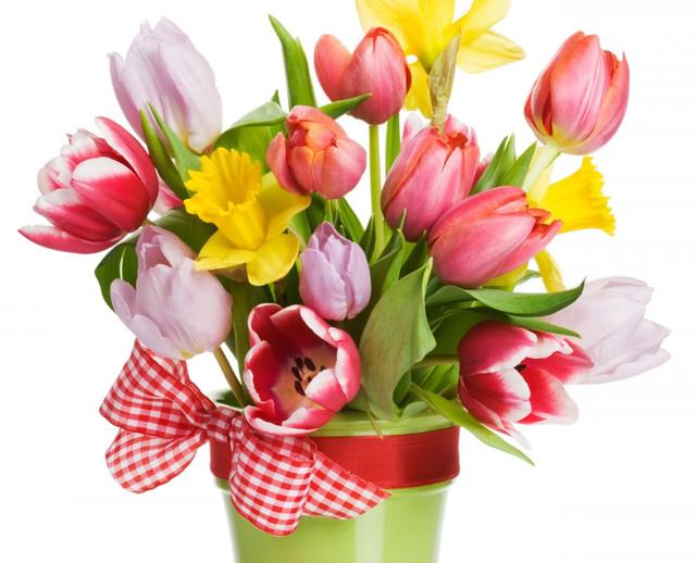 Весна ЗДЕСЬ!!!