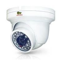 IP видеокамера Partizan IPD-2SP-IR POE v2.1