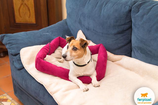 Мягкие места и лежаки для собак и щенков Ferplast • Ферпласт (Италия)