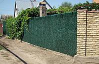 Зеленый забор с основой из оцинкованной сетки рабица
