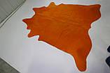 Шкура корови однотонна помаранчева, фото 2