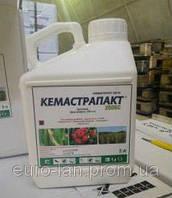 Аналог Фунгицид Импакт (флутріафол, 250 г/л) Плаза / Кемастрапакт