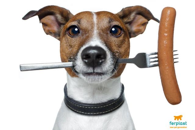 Лакомства - жевательные косточки для собак на растительной основе Ferplast • Ферпласт (Италия)