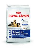 Сухой корм для щенков макси пород больших собак  Royal Canin Maxi Starter 15кг