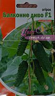Огурец Балконное чудо F1 (комнатный) 5 семян