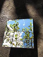Зеркальная плитка фацет 25 мм в ассортименте.плитка зеркальная с фацетом 25мм серебро, цветная.