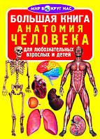 БАО Большая книга. Анатомия человека