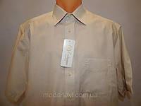 Рубашка мужская с коротким рукавом OLYMP luxor бежевая