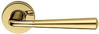 Дверная ручка на круглой розетке LINK-B 673/12-OLS/M полированная/матовая латунь DND