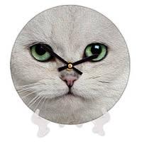 Часы круглые для дома с принтом Кошка 18 см