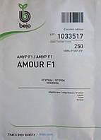 Семена огурца Амур F1. Упаковка 250 семян. Производитель Bejo.