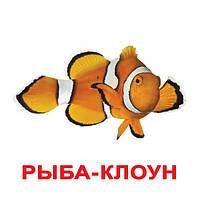 """Карточки Домана на русском """"Обитатели воды"""""""