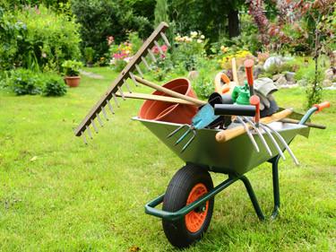 Инструменты и препарати по уходу за садом, растениями