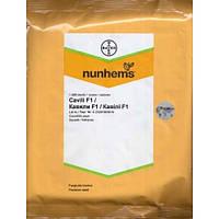 Семена кабачка Кавили F1 (1000 сем.)(Numhems)