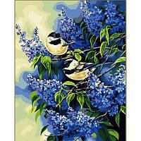 Картина 40х50 Птички на ветках сирени. Рисование по номерам Идейка