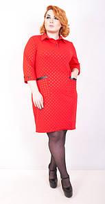 Строгое женское платье от 50 до 56