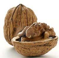Обзор рынка орехов