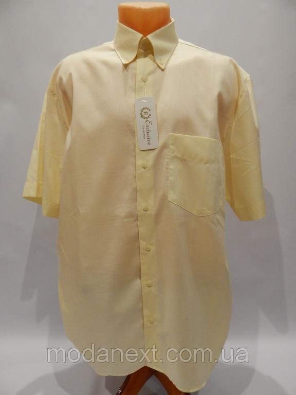 Рубашка мужская с коротким рукавом DORNBUSCH