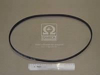 Ремень поликлиновый 4PK1015 (производство DONGIL) (арт. 4PK1015), AAHZX