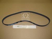 Ремень поликлиновый 5PK1050 (производство DONGIL) (арт. 5PK1050), AAHZX