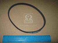 Ремень поликлиновый 3PK515 (производство DONGIL) (арт. 3PK515)