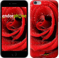 "Чехол на iPhone 6 Plus Красная роза ""529c-48"""