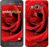 """Чехол на Samsung Galaxy Grand Prime G530H Красная роза """"529c-74"""""""