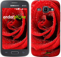 "Чехол на Samsung Galaxy Ace 3 Duos s7272 Красная роза ""529c-33"""
