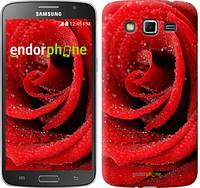 "Чехол на Samsung Galaxy Grand 2 G7102 Красная роза ""529c-41"""