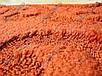 """Набор ковриков для ванной 60х50 см/60х100 см  """"Улитка"""", цвет коричневый, фото 10"""