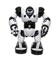 Мини-робот Робосапиен