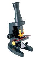 EDU-TOYS Микроскоп для самых маленьких (увеличение в 100-150 раз) (Уценка)
