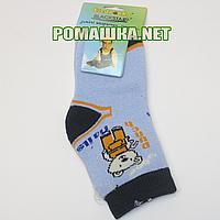 Детские махровые носки р. 80-86 для новорожденного 80% хлопок 20% спандекс ТМ Biedronka 3363 Голубой