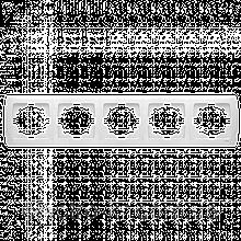 Пятерная горизонтальная рамка VIKO Carmen Белый