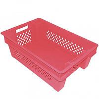 Ящик пластиковый дно сплошное стенки перфорированные красный