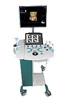 Стационарный УЗД-аппарат Sonoscanner Orcheo XQ (Франция)