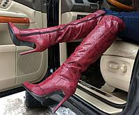 Ботфорты женские демисезонные кожаные цвет марсала AV0009