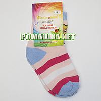Детские махровые носки р. 92-98 для девочки 95% хлопок 5% эластан ТМ Biedronka 3366 Розовый