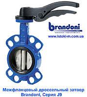 Фланцевая задвижка «Батерфляй» Brandoni J9, DN200