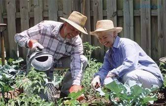 Сад , огород и приусадебное хозяйство