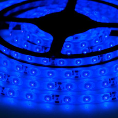 Светодиодная лента SMD 3528, 60 диодов/м, 12V, 4.8W/m, 9lm, IP65, герметичная, 5 метров, синяя